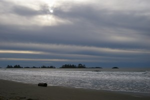 Tofino.beach & log.Y